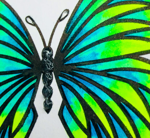 Summer Butterfly